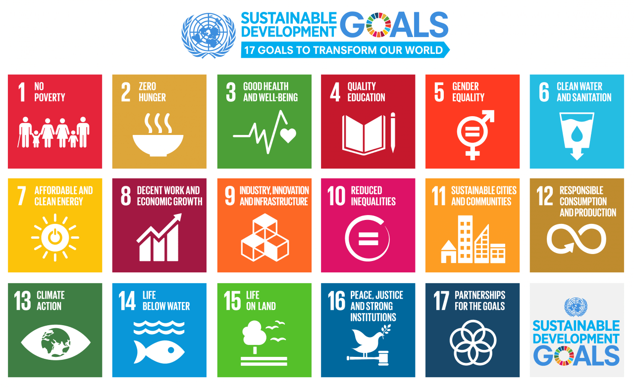 un sustainable development goals co2 brains